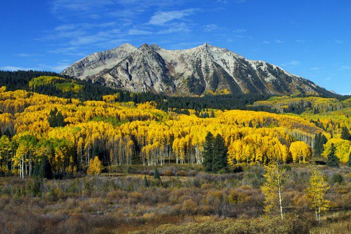 Fall at Kebler Pass Colorado